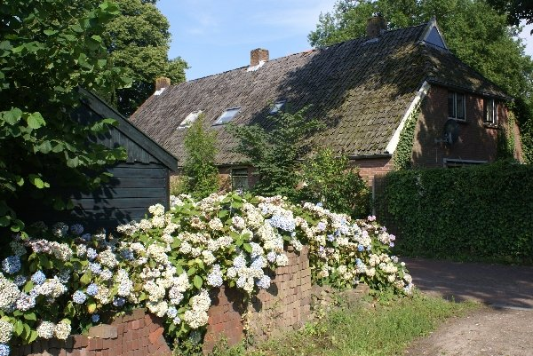 ''Onder de Eiken'' woonboerderij - op 10 minuten loopafstand van het Drents-Friesewold