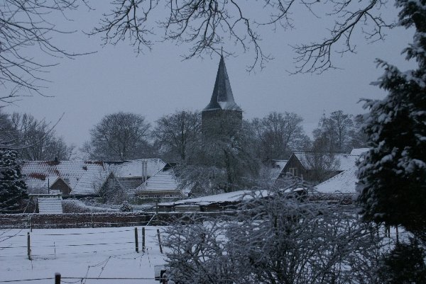 Diever in de winter