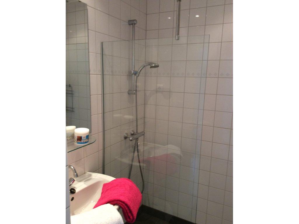 badkamer met douche en wasbak